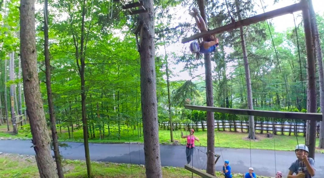 Ladder at high ropes course